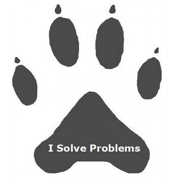 Avatar van I Solve Problems