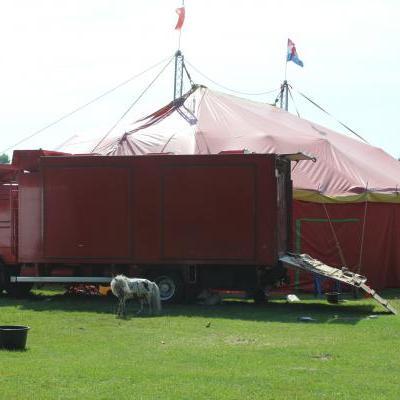 Tentenbouwer