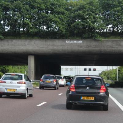 Ecotunnel