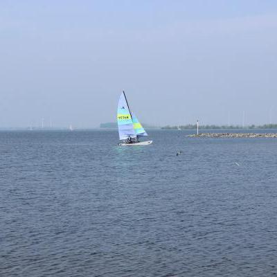 Windsurfer op het water