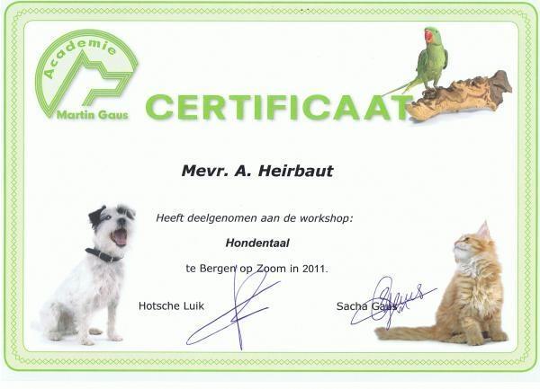 Afbeelding van Hondenuitlaatservice Neus in de wind