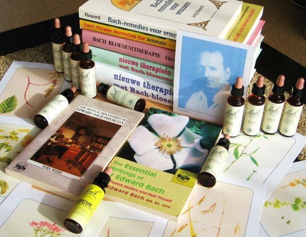 Afbeelding van Oxalis Natural Healing