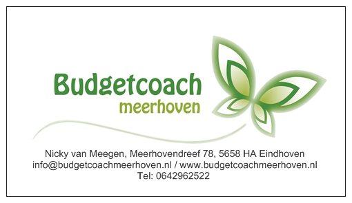 Afbeelding van Budgetcoach Meerhoven