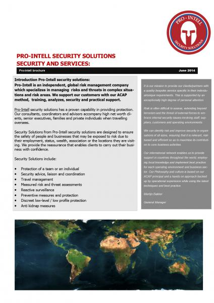 Afbeelding van Pro-Intell security solutions